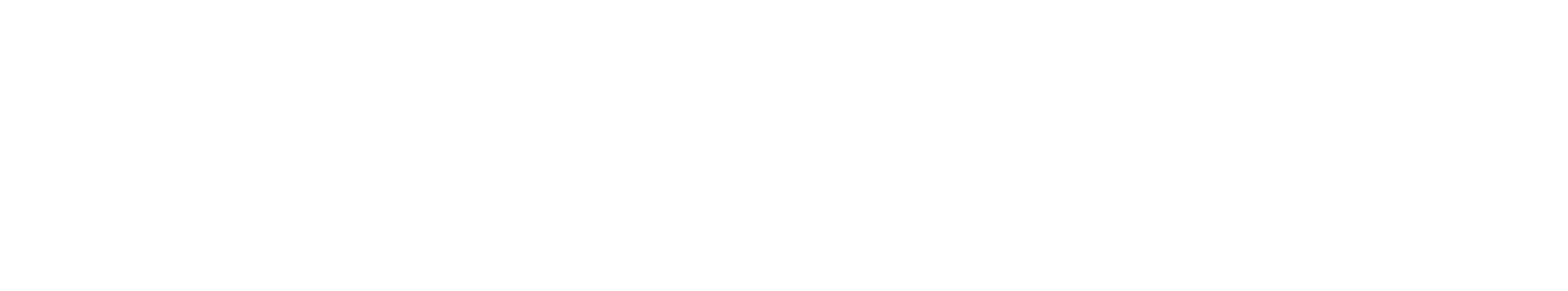 logo_lifetime_4